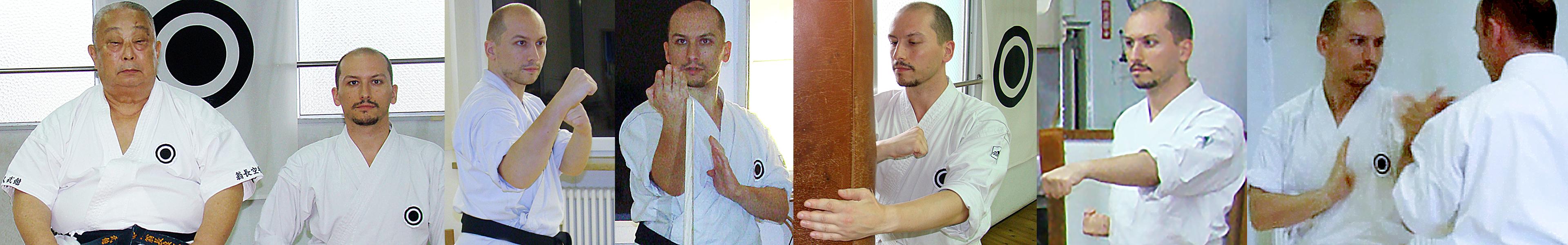 Shinjinbukan.com -  Theme Collage: Ludovic Soler 1
